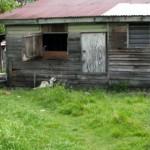 Penan at home in Miri
